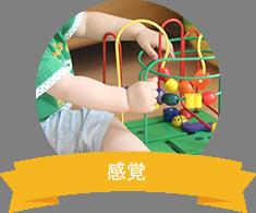 指・手・腕の発達を促進し、自発的な行動と活動を促します。